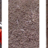 building maintenance solutions, repair concrete spalling surfaces
