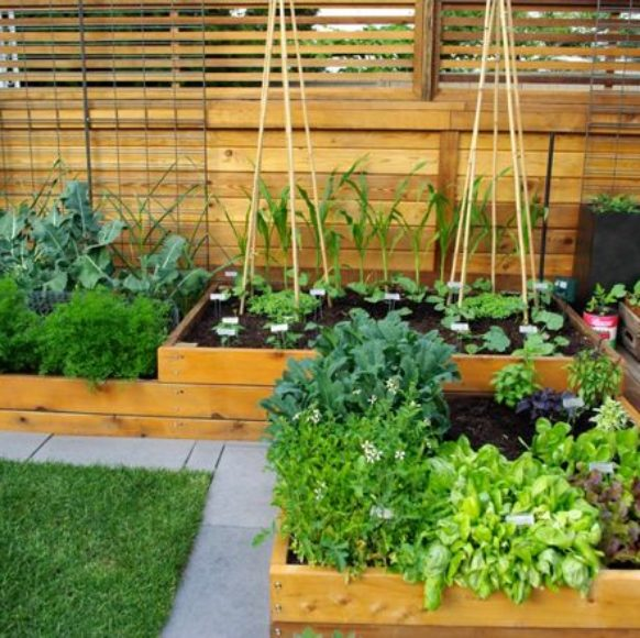 waterproofing timber planter boxes